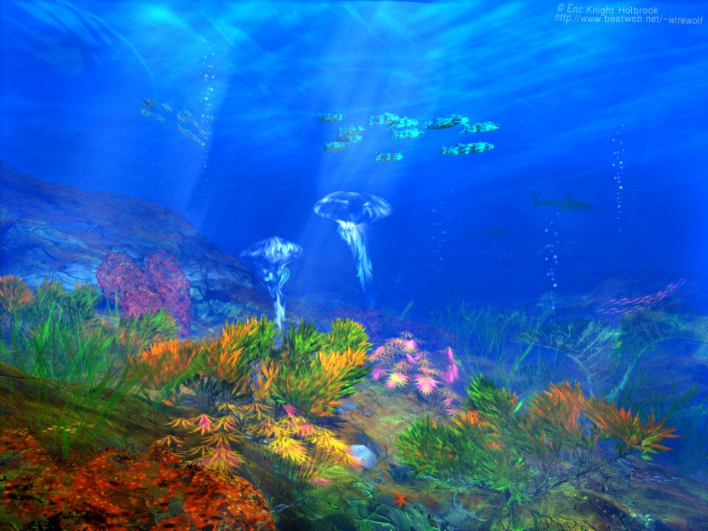 Fond Ecran Ocean