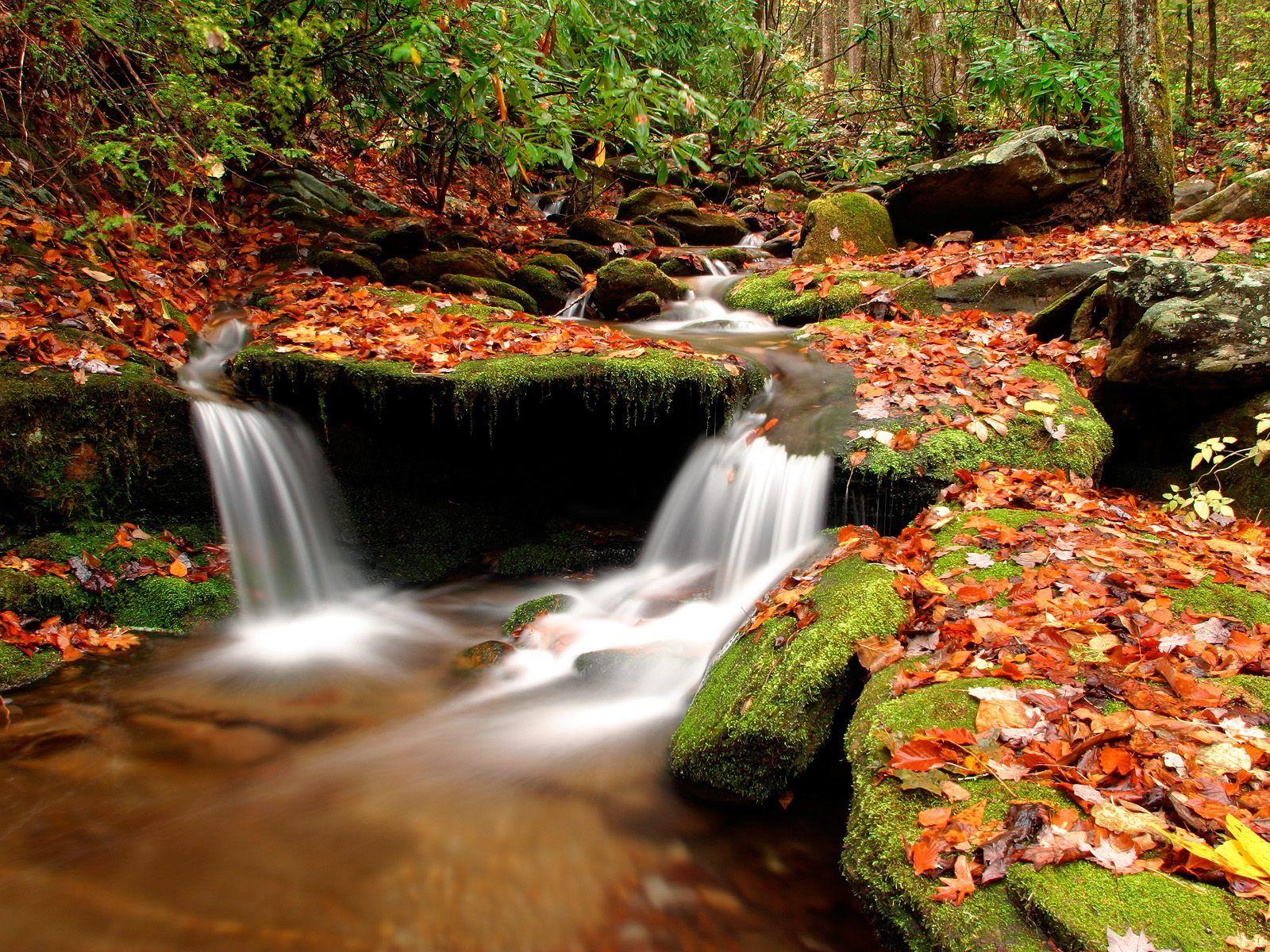 Fond ecran chute d eau for Site fond ecran